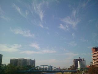 今日もよく晴れてます