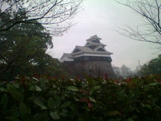 熊本は雨です